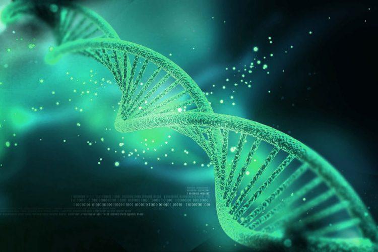CRISPR/Cas9