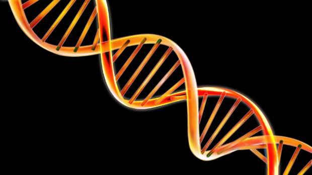 Technology that allows the manipulation of DNA could wipe out diseases from the human population.