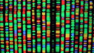 Do You Know How Private Your DNA Data Is?