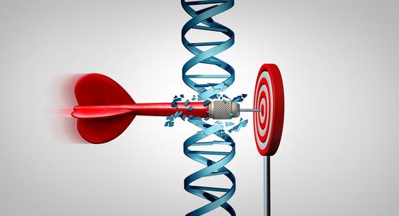 Dart going through DNA double helix to hit bulls-eye