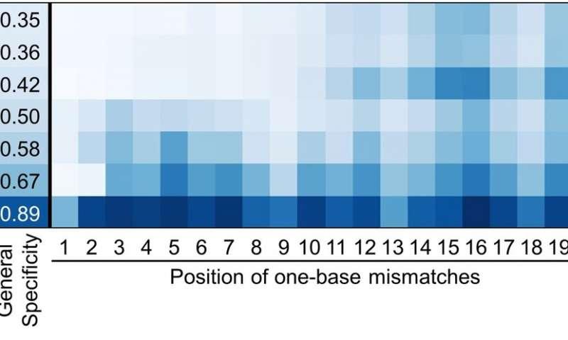 Comparing 13 different CRISPR-Cas9 DNA scissors