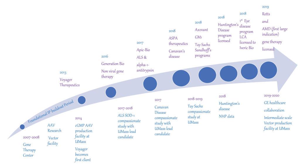 gene therapy program chart