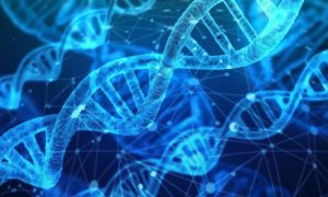 CRISPR meets Pac-Man: New DNA cut-and-paste tool enables bigger gene edits – Phys.org