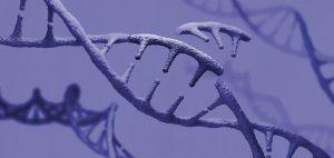 Intellia cleared to start key CRISPR drug study in UK – BioPharma Dive