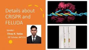 How FELUDA uses CRISPR/Cas9 for Covid detection