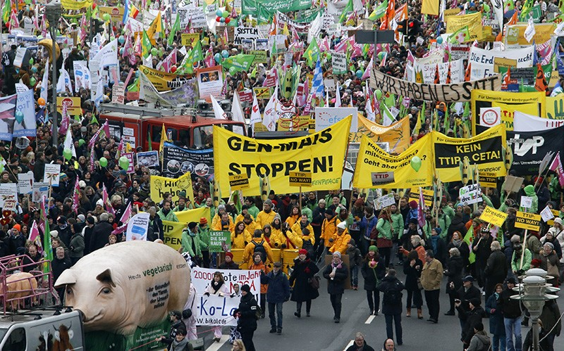 A crowded protest march, including many people with green or yellow flags. Those in the foreground carry a large model pig.