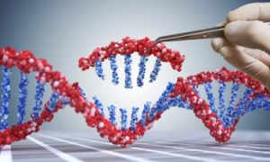 CRISPR: three new developments in the world of gene editing – Drug Target Review