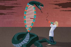 CRISPR gene-editing urgently needs an off-switch – now we have one – New Scientist